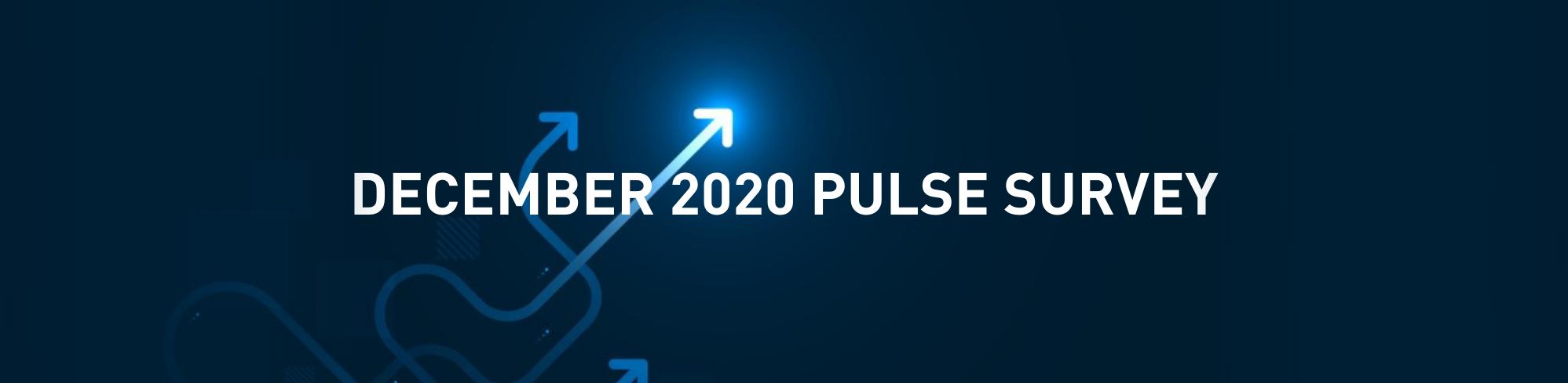 December Pulse Survey