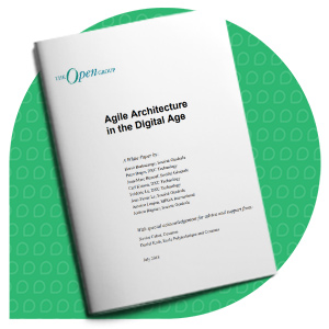 The Open Group Agile Enterprise Architecture
