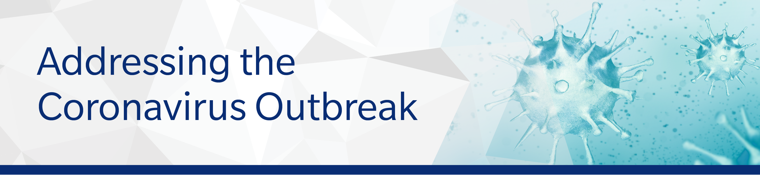 Addressing COVID 19 Outbreak Header Image