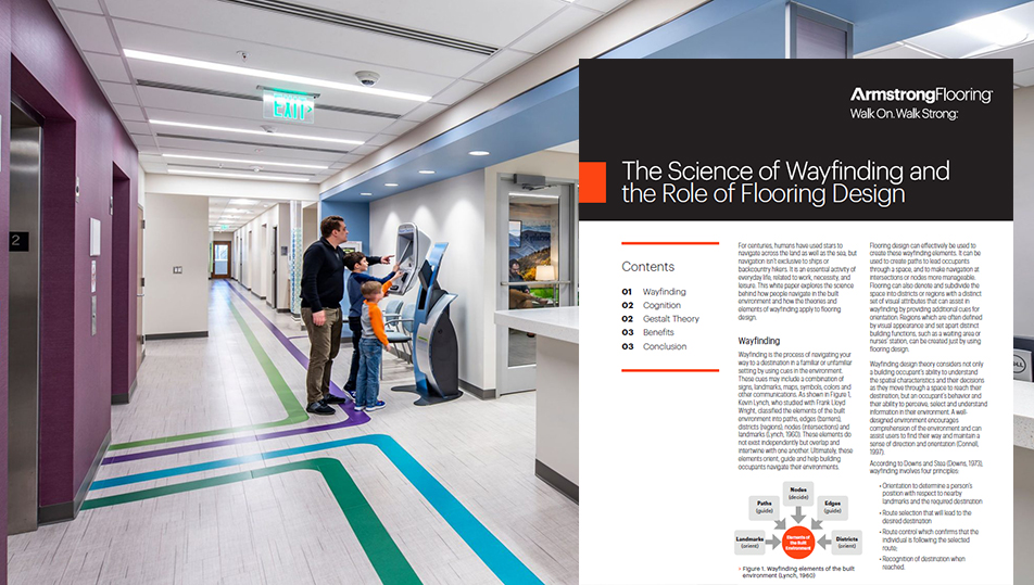 The Science of Wayfinding