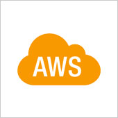 NET+ AWS by DLT