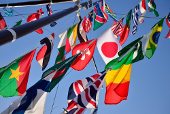 int'l flags