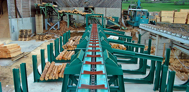 log grading and log sorting from veneer services