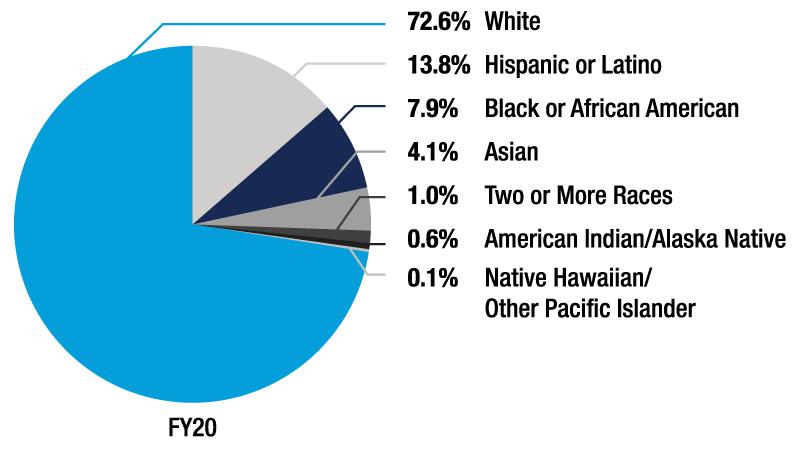 Ethnic diversity graph