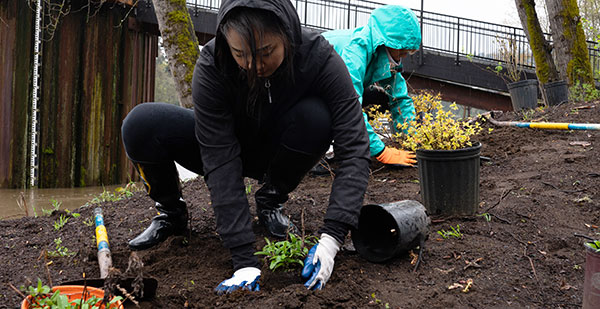 Worker planting with environmental cleanup event