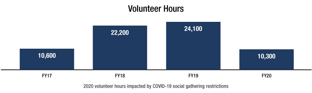 Volunteer Hours graph