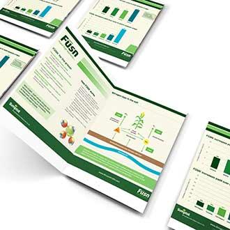 FUSN CA brochure