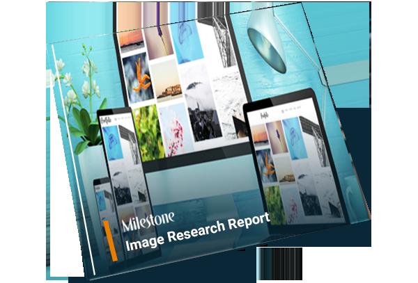 Milestone's Findings on Website Images