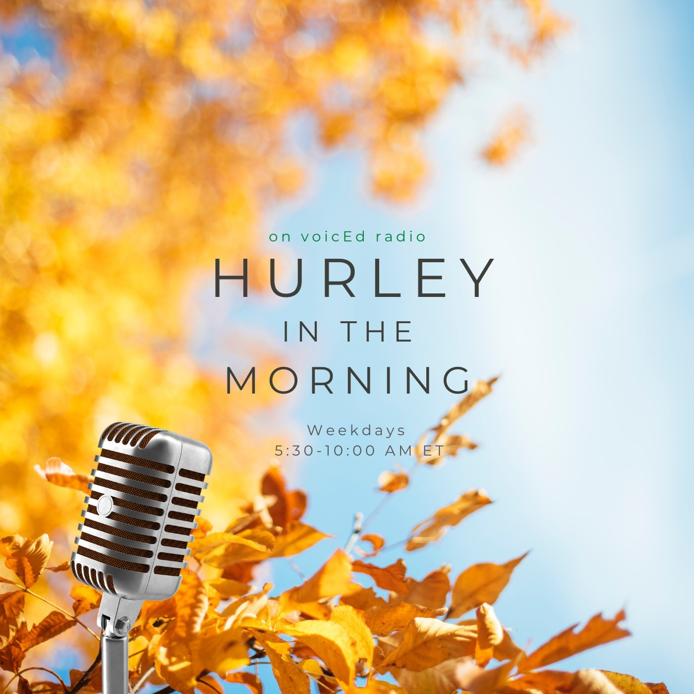 Hurley in the Morning on voicEd Radio