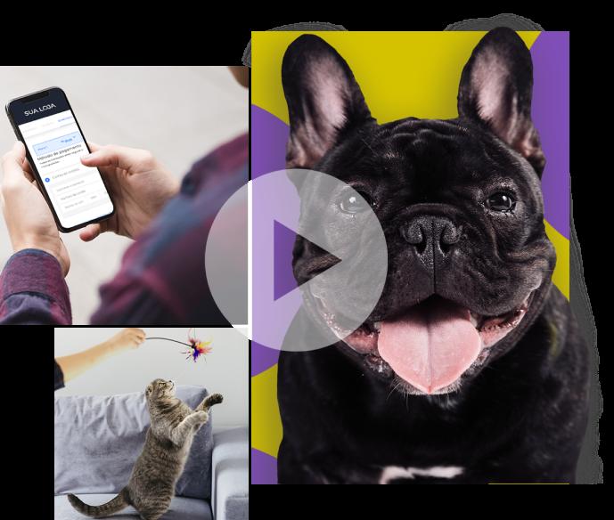 Vender produtos de pet shop online ficou muito fácil