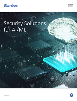 Download Security Solutions for AI/ML