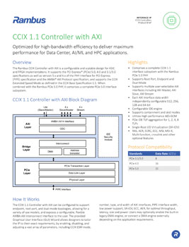 CCIX 1.1 Controller with AXI Product Brief