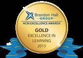 Silver Learning Award