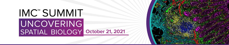 IMC Summit | October 21, 2021
