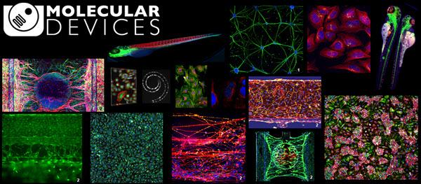 Molecular Devices