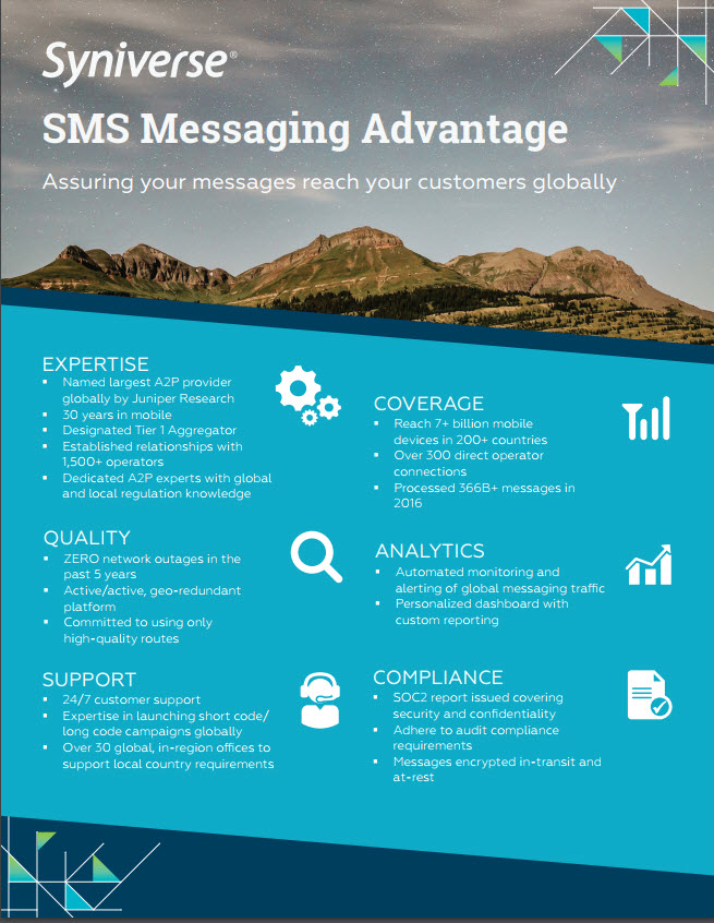 SMS Messaging Flyer Download