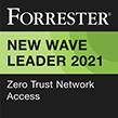 Forrester Wave Leader 2021