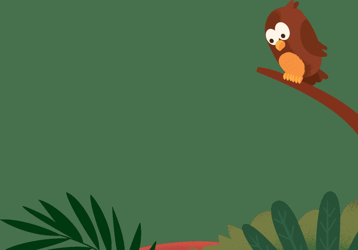An owl on a tree limb