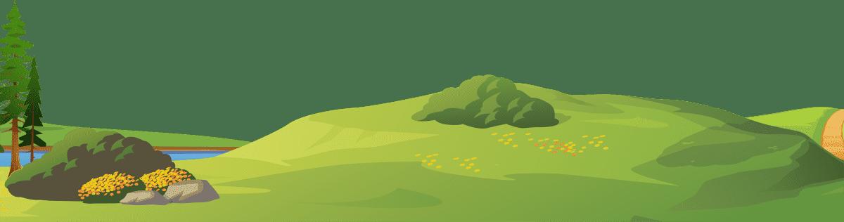 A lush landscape