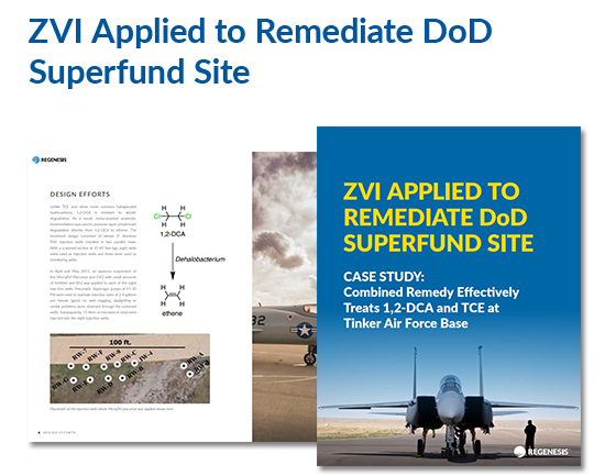 eBook on in-situ remediation